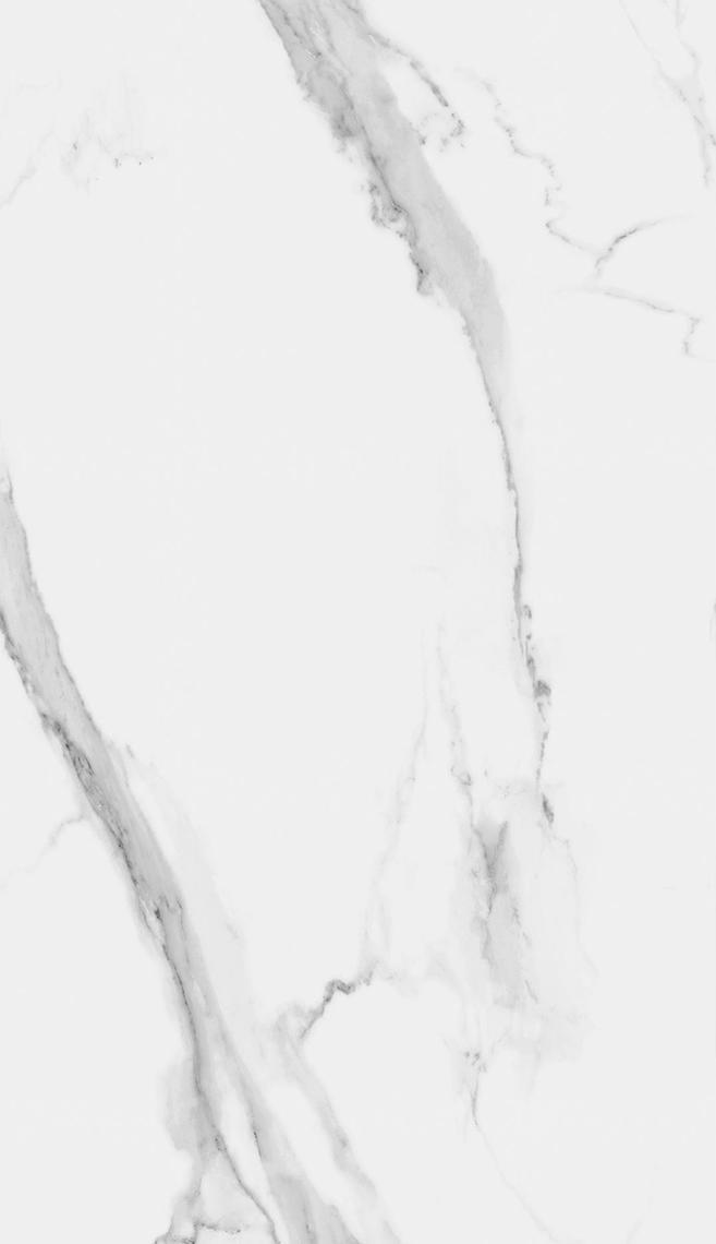ATLANTIS SILK (150x260)