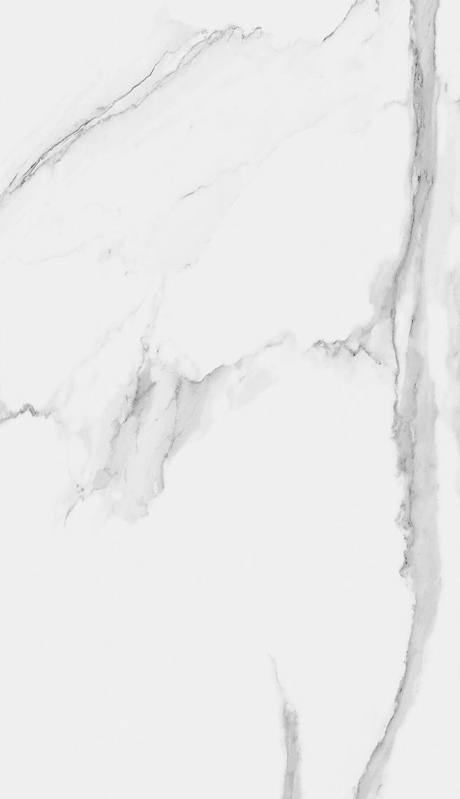 ATLANTIS POLISHED (150x260)